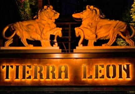 Tierra Leon. Home · Clientes.  clientes 2018 09 15 tierraleon.jpg 8e0c3eeb799